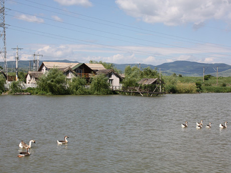 Eco Fishing Romania