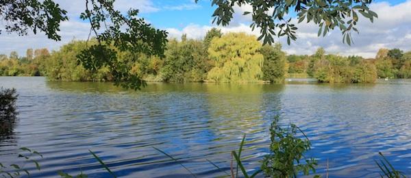 Clubul de pescuit Mid Fisheries Kent (MFK)-Chris Longsdon (2)