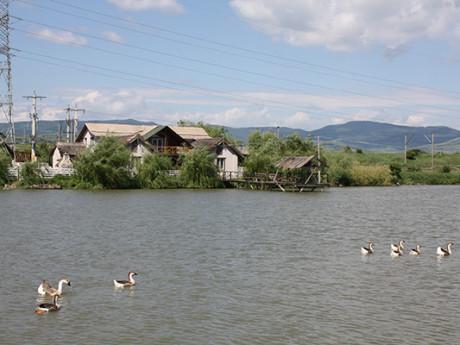 Eco Fishing Romania