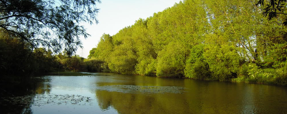Cine sunt braconierii? Braconajul in lacurile de acumulare.(3)