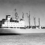 Polar-5